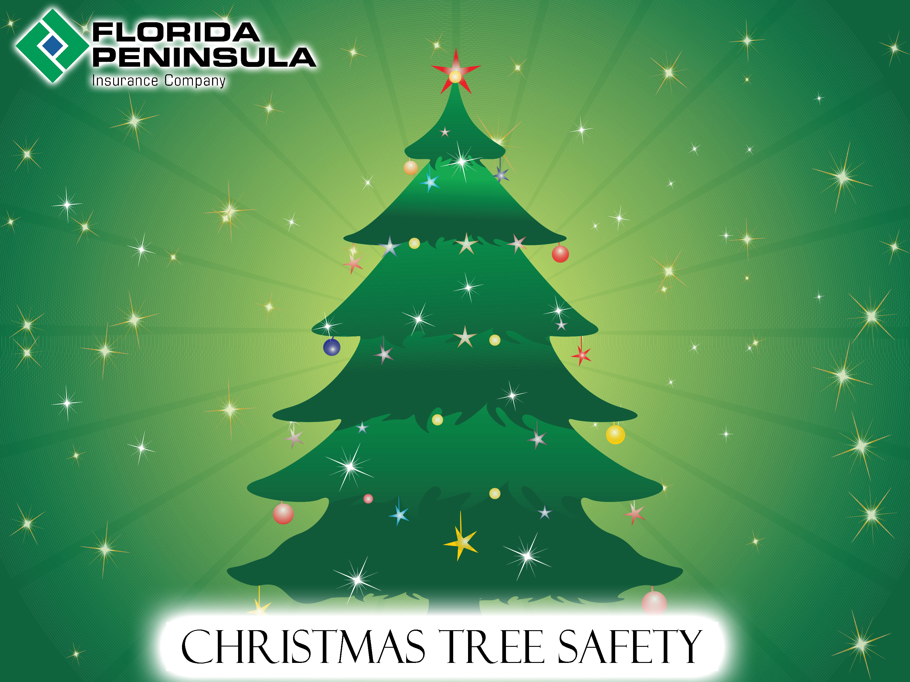 Fire Retardant Spray For Christmas Trees Part - 44: Christmas Tree Safety
